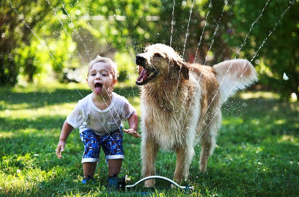 Cani & Bambini: come costruire un bellissimo rapporto!