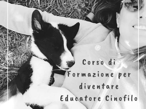 Formazione per Diventare Educatore Cinofilo
